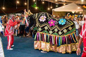 Festas Tradicionais do Brasil - A Festa Boi Bumba é bem conhecida